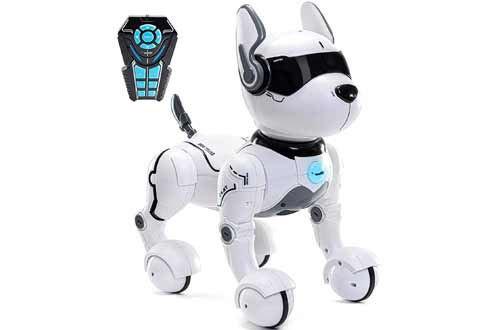 Top Race Remote Control Robot Dog Toys